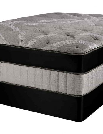 Dynasty EuroTop Mattress On Box Spring Image