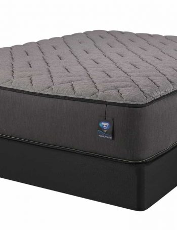 Palmetto Firm Mattress On Box Spring Image