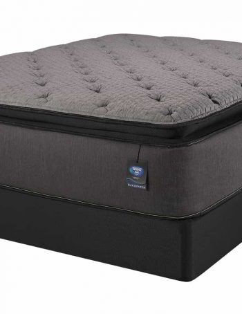 Palmetto PillowTop Mattress On Box Spring Image